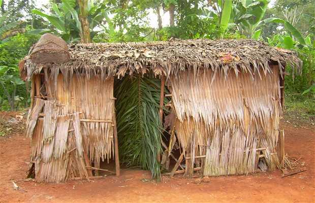 Poblado de los pigmeos Baka