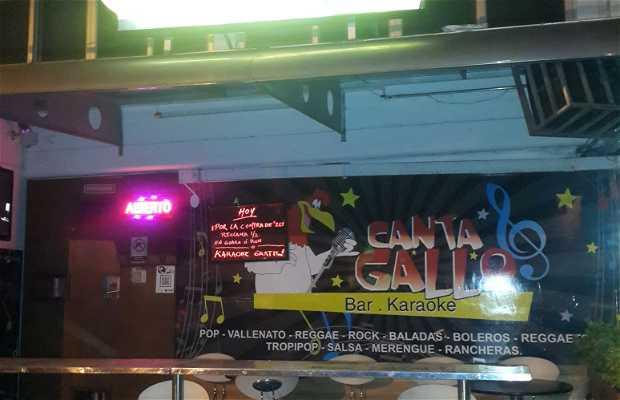 Canta Gallo bar