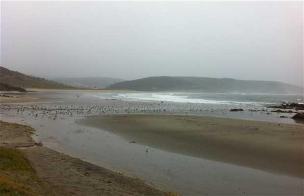 Spiaggia di Nemiña