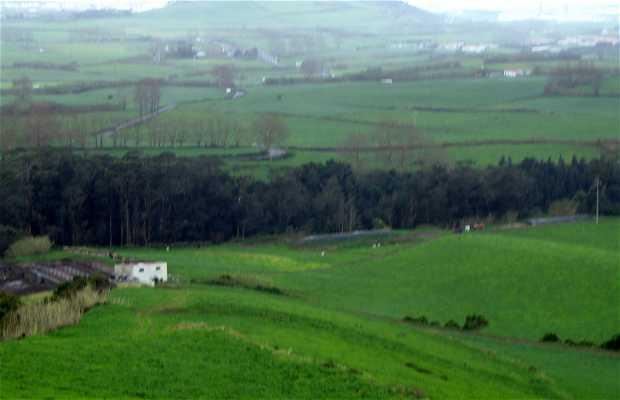 Landeira Monte da Velha
