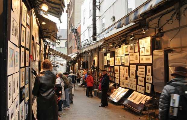 rue des Trésors