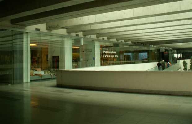 Tienda fondacion artesania
