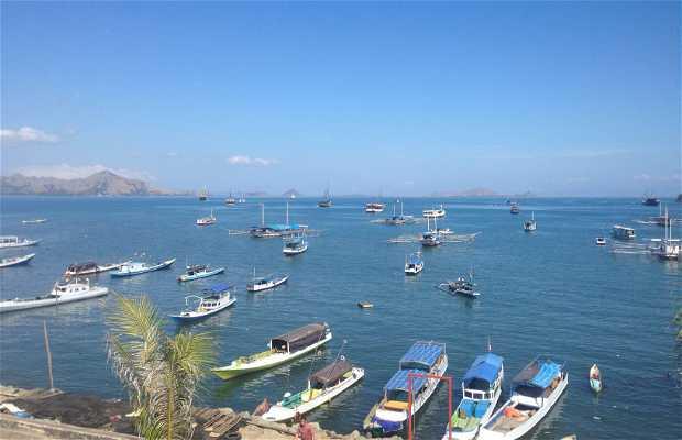 Port of Labuan Bajo