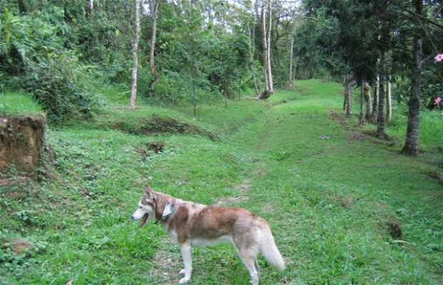 Los Alcazares Ecopark