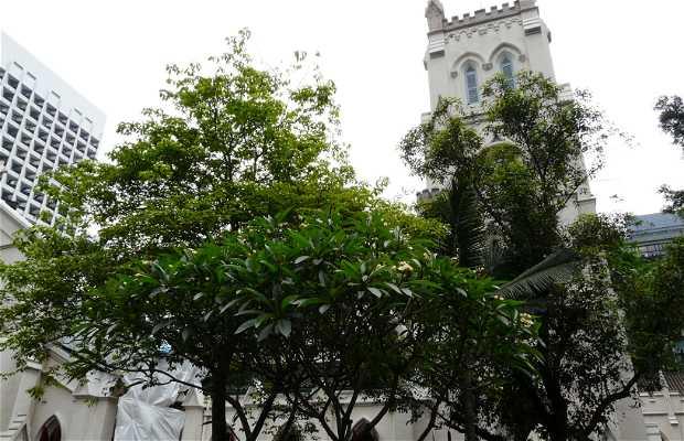Catedral de St John