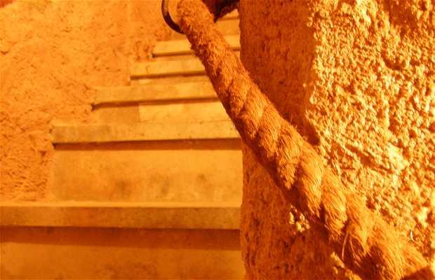 Cave Historique Don Carlos S.XV