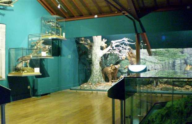 Museo Regional de la Naturaleza