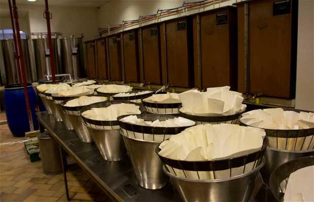 Visite guidée de la fabrique de parfum Fragonard