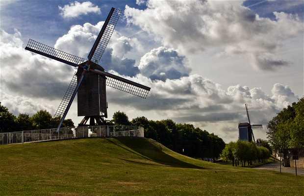 Sint-Janshuis Mill (Sint-Janshuismolen)