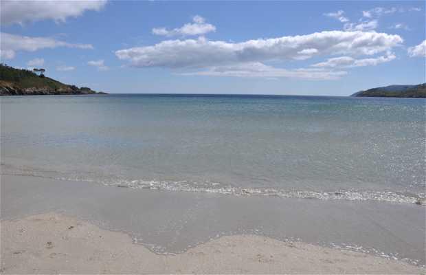 Playa de la Lagosteira
