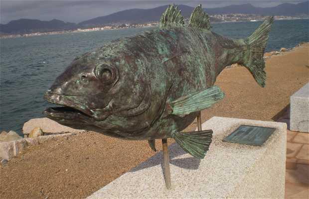 Chemin dos Peixes