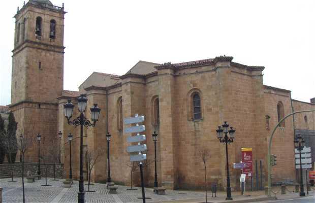 La Cathédrale de San Pedro