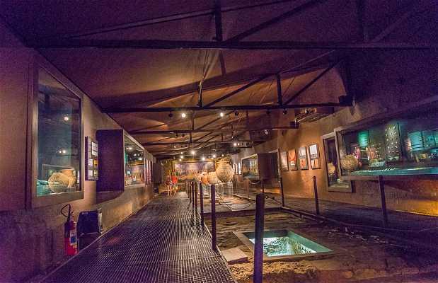 Museu do Encontro - Belém PA.