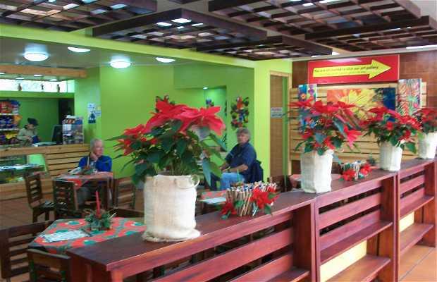 Volcano Poas visitor center