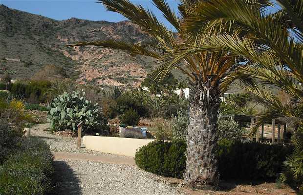 Jardín botánico del Albardinal ( Cabo de Gata)