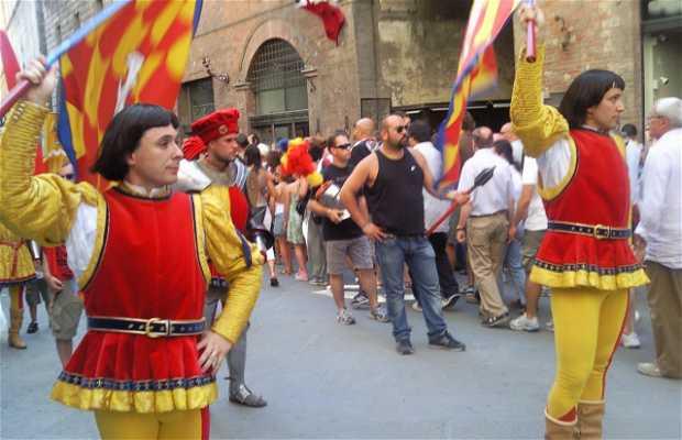Corrida de cavalos Palio di Siena