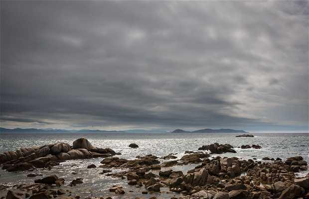 Praia de Pedras Negras