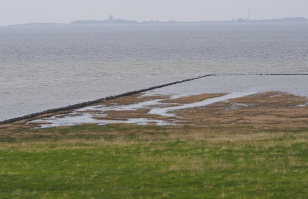 Llanura de mareas