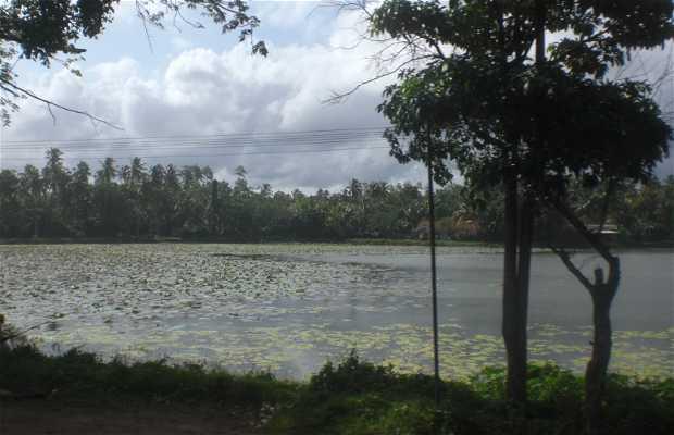 Río Nilwala