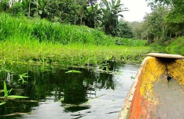 reserva ecológica Mache-Chindul