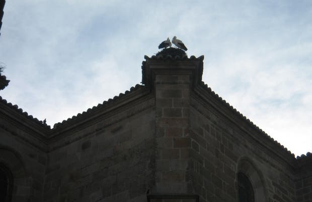 Iglesia de Santa María la Mayor de la Asunción
