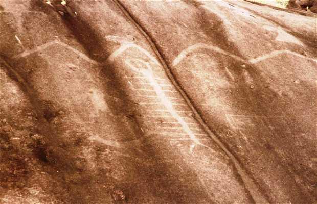 Petroglifo Piedra Pintada