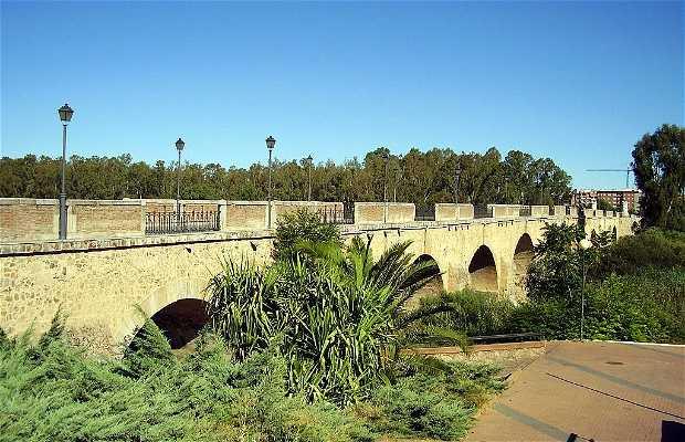 Ponte de Palmas