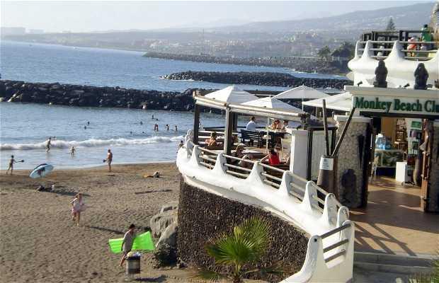 Ristorante Monkey Beach Club