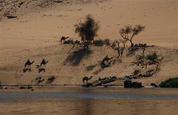 Orillas del Nilo