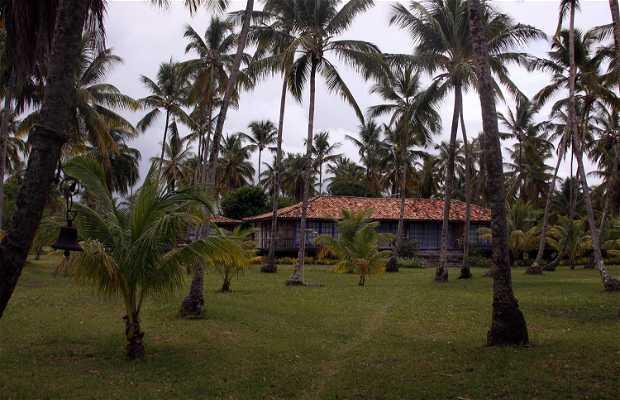 Ponta dos Castelhanos