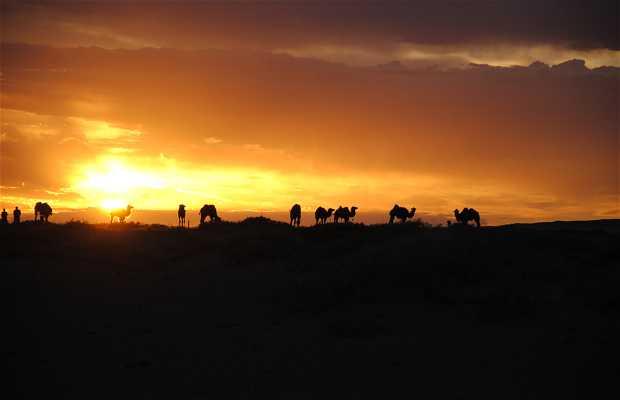 Las Dunas del Desierto del Gobi