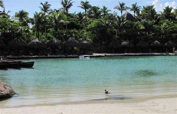 Playas de Xcaret