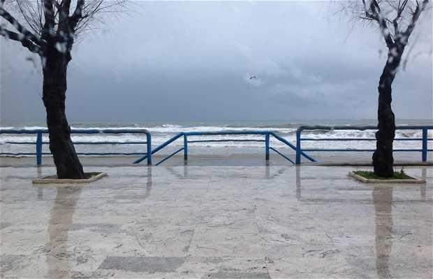 Paseo Marítimo Terracina