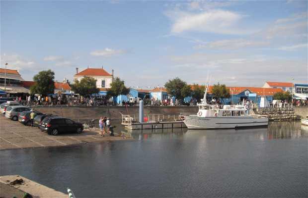 El puerto de la Cotinière