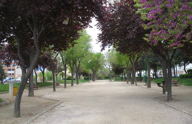 Linear Park: Green areas of Albacete