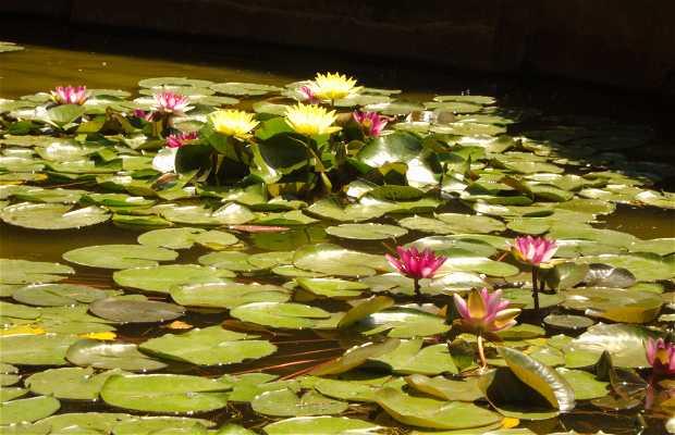 Jardin de Sante Clotilde