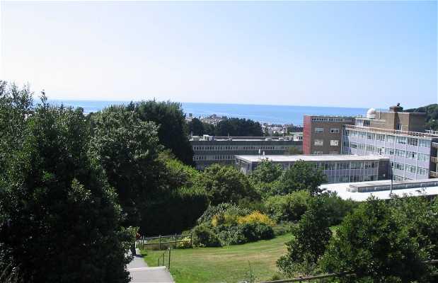 University of Aberyswyth