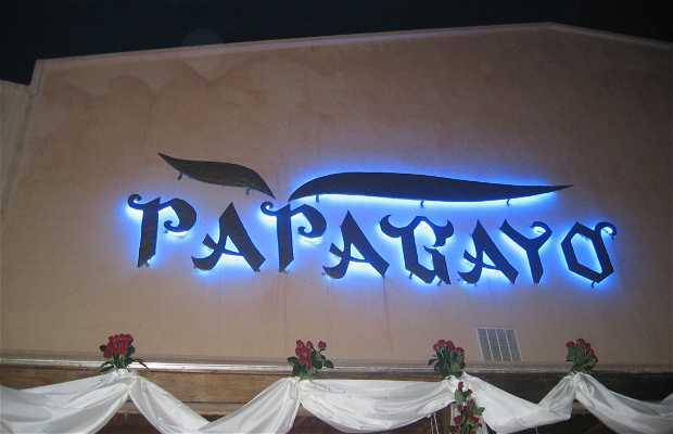 Papagayo