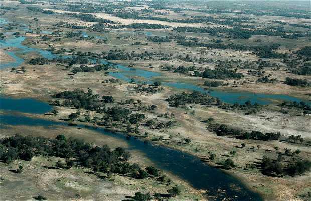 Campement sauvage au Delta del Okavango