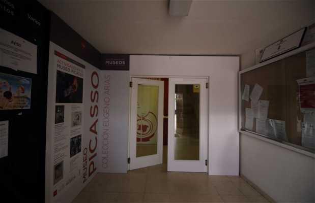 Museo Picasso-colección Eugenio Arias