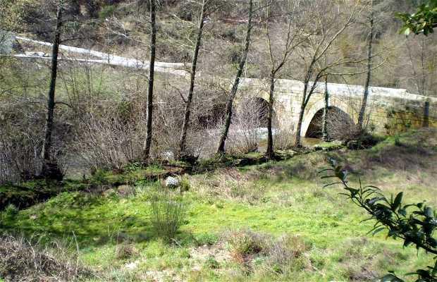 Ponte de Tarouca