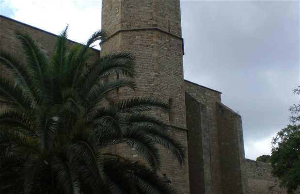 Barrio Reina Elisenda
