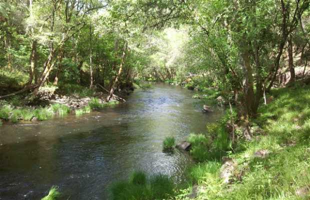 River Arnoya