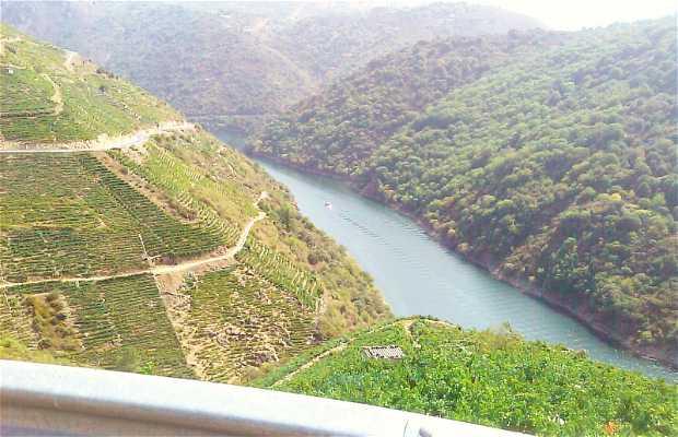 Route de vignobles (Ribeira Sacra).