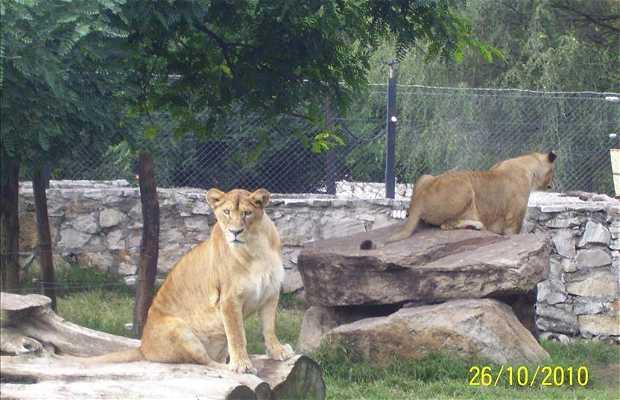 Zoológico de Batan