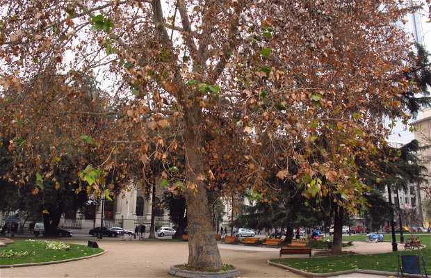 Praça Benjamin Vicuna Mackenna
