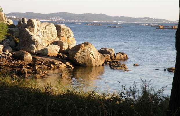 Vilanova de Arousa a Pontevedra