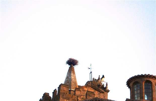 Stork in LAGUARDIA