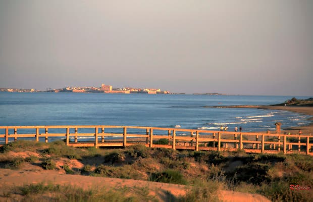 Playa de Arenales del Sol