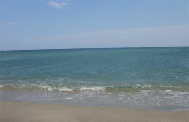 Camino de la playa de Port Leucate - Port Barcares